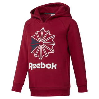 Boys Classics Hoody Cranberry Red DH3234