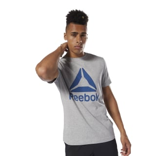 GRAPHIC TEE SHORT SLEEVE QQR- Reebok Stacked medium grey heather/bunker blue DH3774