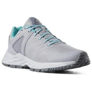 Reebok Astroride Trail Cool Shadow / Cold Grey / Cold Grey / Solid Teal CN6243