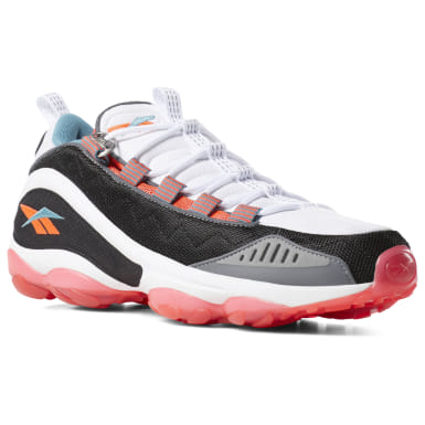 DMX Run 10